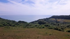 20170713_153909 (Sweet Mango 1965) Tags: hastings country park