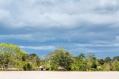End of the Rainy Season on The Amazon River (Jill Clardy) Tags: amazonriver iquitos peru southamerica dry season water clouds cloudy sky storm humid humidity forest rainforest kapok tree 201304064b4a2411