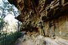 20170709-29-Bluff River Gorge sandstone cliffs (Roger T Wong) Tags: 2017 australia bluffrivergorge buckland rogertwong sel1635z sony1635 sonya7ii sonyalpha7ii sonyfe1635mmf4zaosscarlzeissvariotessart sonyilce7m2 tasmania bushwalk caves cliff erosion gorge hike outdoors sandstone tramp trek walk