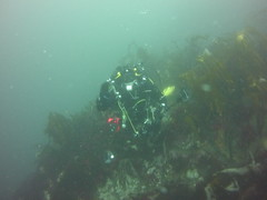 Peter's Rock (Rob Dickson) Tags: scuba diving scillies islesofscilly