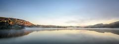 Lake Tutira mirror (lizcaldwell72) Tags: trees hawkesbay sunrise reflection sky newzealand mist water laketutira light