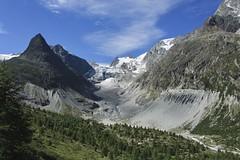 glacier du Mont Miné (bulbocode909) Tags: valais suisse leshaudères valdhérens ferpècle vallondeferpècle glacierdumontminé glaciers montagnes nature moraine arbres paysages nuages vert bleu montminé