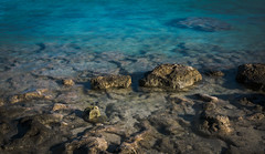dddddEDIT- (no.wavves) Tags: coral bay western australia wildlife acropora panasonic g7 f17 vsco lightroom photography pls like photos k thanx