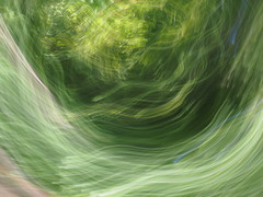 viridian maelstrom (Asenath Waite) Tags: green abstraction abstract abstractphotography adaptedlens legacylens vintagelens russianlens sovietlens helios44258mmf2 helios442 manualfocus manualfocuslens icm intentionalcameramovement blur blurry olympusep3 microfourthirds m42 m42lens nature naturallight
