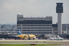 Itami Airport 2017.7.19 (1) JA743A / C-3PO ANA JET (B777-200) (double-h) Tags: omd em1markii omdem1markii lumixgxvariopz45175mmf4056asphpowerois rjoo itm osakaairport itamiairport 大阪空港 伊丹空港 airplane 飛行機 伊丹スカイパーク itamiskypark ja743a ana 全日空 b767 b767300 specialpainting 特別塗装 c3po starwars スターウォーズ スター・ウォーズ