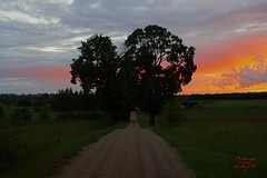 Road to sunset (Jurek.P) Tags: sunset zachódsłońca road droga masuria mazury poland polska countryside sky niebo jurekp sonya500