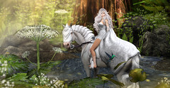 Galadriel (meriluu17) Tags: jinx horse elven elf elfish galadriel white princess elfiish fantasy fantastic surreal people portrait forest river pot plant flower flowers animal pet horsey armour war guardian guard lace