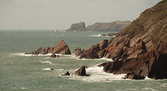 Pembroke Coastal Path, Skomer Island (ajax_pc) Tags: coastal skomer island pembroke path