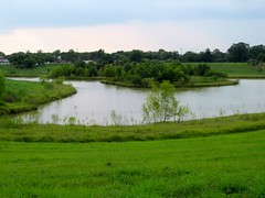 Willow Waterhole (M.P.N.texan) Tags: willowwaterhole houston lake water park wetlands texas landscape