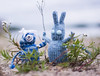 Uni and Mimi at the beach (stitchling) Tags: knitty pocketcreatures