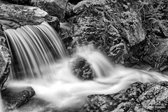 Cold Brook Falls (pandt) Tags: water waterfall newhampshire randolph cold brook falls serene smooth blackandwhite bw national park canon long exposure hdr eos 7d slr flickr outdoor landscape nature monochrome river stream creek forest