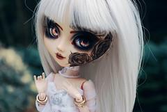 Nishka (Nenn.) Tags: nenndolls nenn nenndollsmakeup pullip junplanning groove doll pullipfullcustom