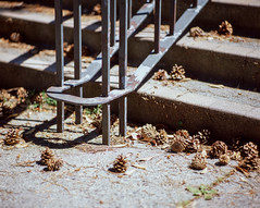 Stairway 150/2.8 test (TCZPhotography) Tags: pentax mediumformat 120 provia 6x7 art photography zuliani trevor street architecture vancouver ubc geometry super takumar 15028 film buyfilmnotmegapixels asthetic abstract color contrast midday light campus university britishcolumbia tones urban canada concrete mf