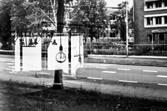 (Nico_1962) Tags: leica summarit leicam m8 zwartwit blackandwhite weerspiegeling reflection zwolle rangefinder meetzoeker manualfocus nederland thenetherlands bw