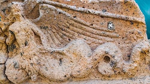Winged Mermaid