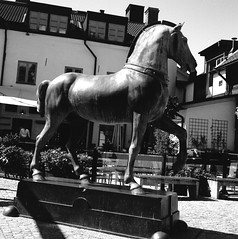 Bysantisk Häst (rotabaga) Tags: sweden sverige svartvitt örebro blackandwhite bw bwfp mediumformat mellanformat 120 6x6 lomo lomography lubitel166 tmax100 diy twinlens