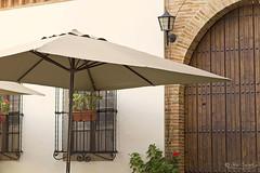 Sombrilla (Panthea616) Tags: sombrilla paraguas lmv labúsquedadeltesoro2017