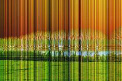 gestreept landschap (roberke) Tags: photomontage photoshop layers lagen landscape landschap abstract lijnen lines textures textuur creation creative creatief surreal kleurrijk colorfull conceptual