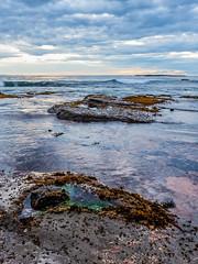 Cloudy Sunrise Seascape (Merrillie) Tags: daybreak portraitlandscape sand landscape nature water newsouthwales rocks nsw beach scenery clouds newport earlymornings waterscape sea australia dawn seascape