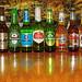 World Beers by Kaye Menner
