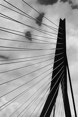 Rotterdam Erasmusbrug HSS (gerdvanmechelen) Tags: netherlands holland nederland rotterdam bridge erasmusbrug erasmus clouds hss