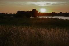 The dusk of a summer night (Megs svg) Tags: maas netherlands dusk