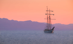 Sailing towards the Sunset (Jonathan Simonsen) Tags: italy sicily orange purple blue brown boat sailing sailingboat yacht sunset ocean mountains fave palermo blurred evening harbour canon 750d dslr eos