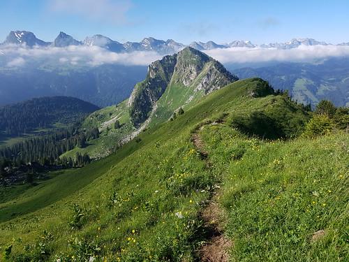 Kammweg zwischen Neuenalpspitz und Gmeinenwies- Höchi