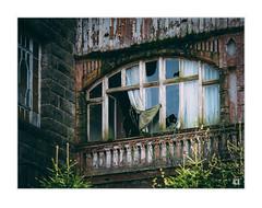 (lotl.axo) Tags: schierke architektur verfall abandonment sachsenanhalt fdgberholungsheimhermannduncker fuji xt1 fenster xf18135mm deutschland harz lostplaces gebäude germany abandoned abandonedplace architecture buildings decay verlasseneorte windows