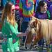 Pony Petting (BKHagar *Kim*) Tags: bkhagar mardigras neworleans nola la louisiana uptown outdoor street napoleon sunglasses crowd beads parade pony horse