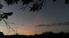 segunda-feira, 17/07/17 ☁ Vitória, Espírito Santo (ohmystunning) Tags: céufienanuvem clouds nuvens cloud nuvem céu sky nublado cloudy photography fotografia vitória espírito santo es july utopiananuvem paysage scenery nature tree streets city summer natureza blue white sunset