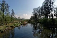 De Biesbosch National Park, the Netherlands (jan_2j) Tags: biesbosch pentax
