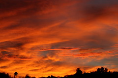 Sunset July 26 2017 #33 (Az Skies Photography) Tags: sun set sunset dusk twilight nightfall cloud clouds sky skyline skyscape skycandy skyfire red orange yellow gold golden salmon black canon eos 80d canoneos80d eos80d rio rico arizona az riorico rioricoaz arizonasky arizonaskyline arizonaskyscape arizonaskycandy arizonaskyfire july 26 2017 july262017 72617 7262017