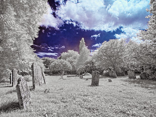 The graveyard in high summer.