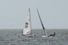 2017-07-31_Keith_Levit-Sailing_Day2049.jpg (2017 Canada Games // Jeux du Canada 2017) Tags: keithlevitphotography gimli gimliyachtclub canadasummergames interlake laser winnipeg manitoba singlehandedlaser sailing