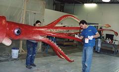 Giant-squid - 01 (TaylorStudiosInc) Tags: taylorstudios model squid giantsquid