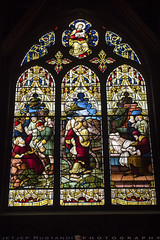 One of St Paul's window (T Ξ Ξ J Ξ) Tags: newzealand stpaulcathedral wellington d750 nikkor teeje nikon2470mmf28
