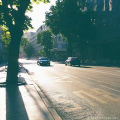 Bus lane (Car & Street photos) Tags: passat vw car stree skopje tree shadow sunset