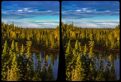 Ontario nature 3-D / Stereoscopy / CrossEye / HDR / Raw (Stereotron) Tags: north america canada province ontario lake river creek tree plants forest woods outback backcountry indiansummer autumn fall crosseye crosseyed crossview xview cross eye pair freeview sidebyside sbs kreuzblick 3d 3dphoto 3dstereo 3rddimension spatial stereo stereo3d stereophoto stereophotography stereoscopic stereoscopy stereotron threedimensional stereoview stereophotomaker stereophotograph 3dpicture 3dglasses 3dimage hyperstereo twin canon eos 550d yongnuo radio transmitter remote control synchron kitlens 1855mm tonemapping hdr hdri raw