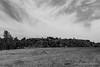 Balade sur le site du 6 Perrier, charbonnage et terrils à Souvret et Courcelles, organisée par la Maison du Tourisme de Charleroi (Olivier_1954) Tags: 06000000 06007000 6perrier concepts courcelles environnement flore iptcnewscodes iptcsubjects maisondutourisme nb nature natureetfaune souvret balade environmentalissue faune terril wallonie belgique be charbonnage paysage ciel