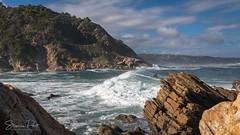 Surfen in der Victoria Bay (Foto-Unlimited) Tags: afrika brandung george meer surfer südafrika victoria bay wasser welle wellenreiten