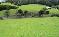 1802 Eastern Dorrigo Way, Ulong NSW
