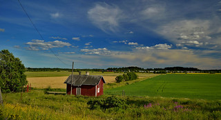 Step into the finnish countryside. Domestic Animal Farm in Haltiala. Summer, Finland