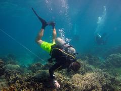 Scientific Diver (PacificKlaus) Tags: malapascua visayas cebu philippines underwater ocean nature scuba diving peopleandthesea