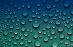 Water Drops on a mayo lid (ellyrussellphotography) Tags: bottle relflection waterdroplet waterdrop tinybubble drops condensation waterbottle