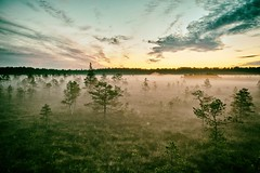 Summer magic (explored) (KadriH) Tags: explored bog summer night estonia fog sunrise