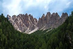 Dolomites (bjorbrei) Tags: forest trees mountains vallunga selva valgardena gherdëina gröden wolkenstein dolomites dolomiten dolomiti tyrol tirol tirolo italy italia