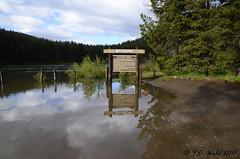 The Snake is overflowing! (V. C. Wald) Tags: cattlemansbridge grandtetonnationalpark snakeriver tamron16300mmdiiipzd
