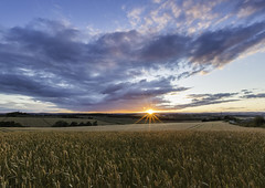 Last Minute (Twiggy's Photography) Tags: sunset fields chesterfield derbyshire alantwigg wheat golden hour landscape