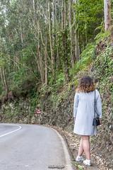 _MG_9834 (_vicenmiranda) Tags: green forest bosque verde portrait cudillero asturias rural